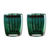Set of 2 Peacock DOF Tumblers by Artland